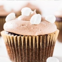 Top 10 Hot Chocolate Dessert Recipes For Cold Evenings